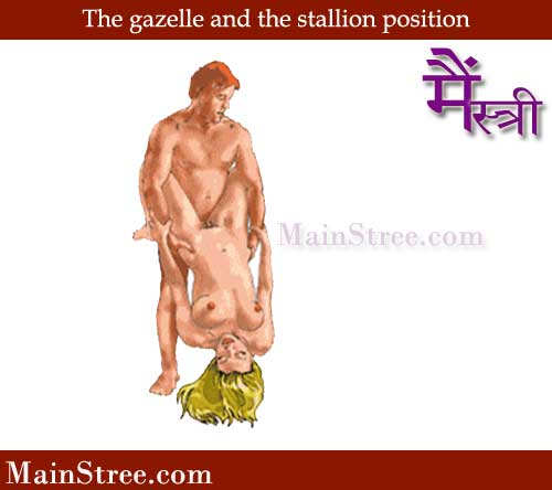 gazelle and the stallion sex position