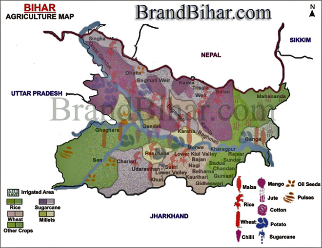 Bihar Agriculture Map